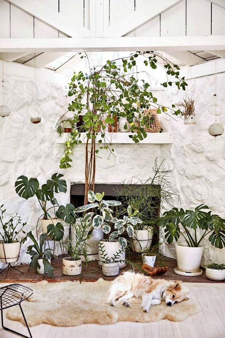 Decoración rústica en una casa pequeña con interiores revestidos en madera 5