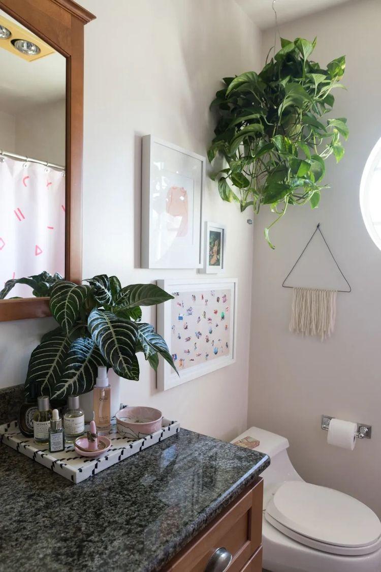 Cuadros y plantas en el baño. Las plantas elegidas son las que se adaptan bien a las condiciones de calor y humedad del baño.