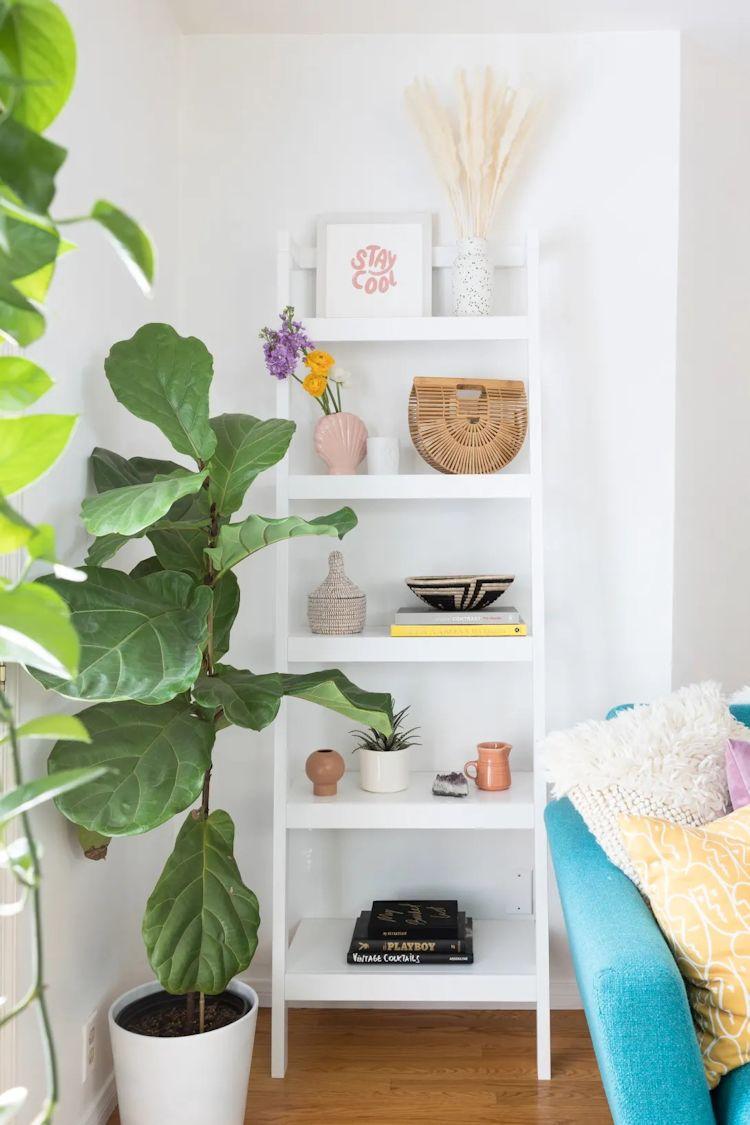 Librero y un Ficus Lyrata complementan la decoración de la sala