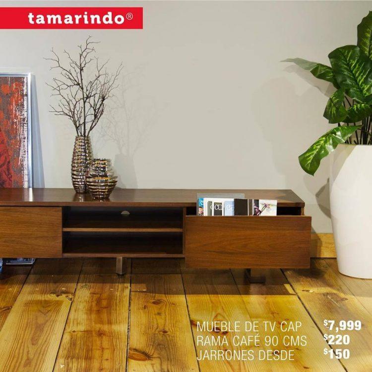 Tamarindo 5