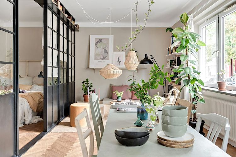 Las plantas son el elemento con el cual se incorpora verde a la decoración del estudio.