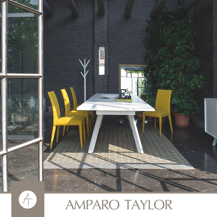 Amparo Taylor en Guadalajara y Zapopan, Jalisco - 9