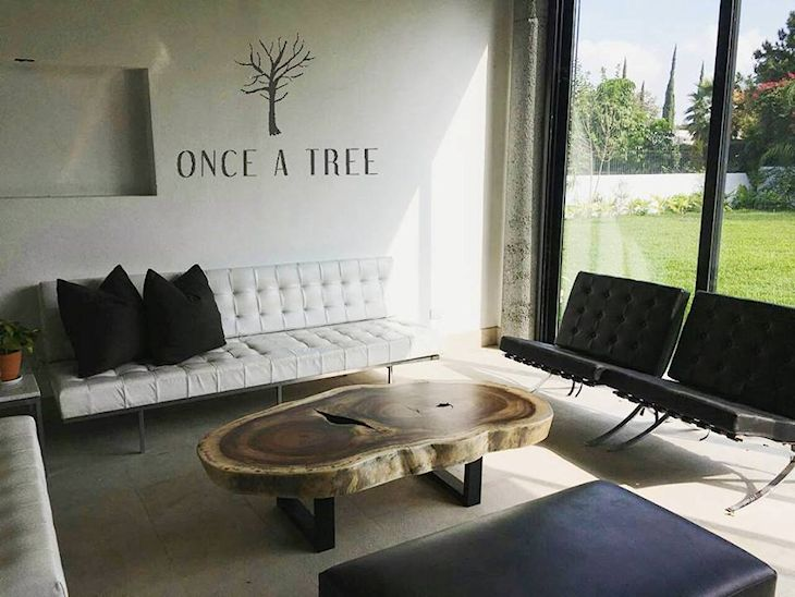 Once A Tree 4