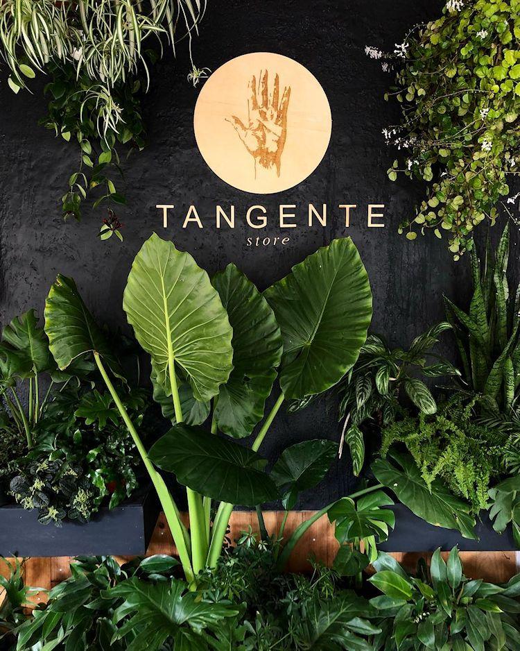 Tangente Store en Zapopan / Guadalajara 1
