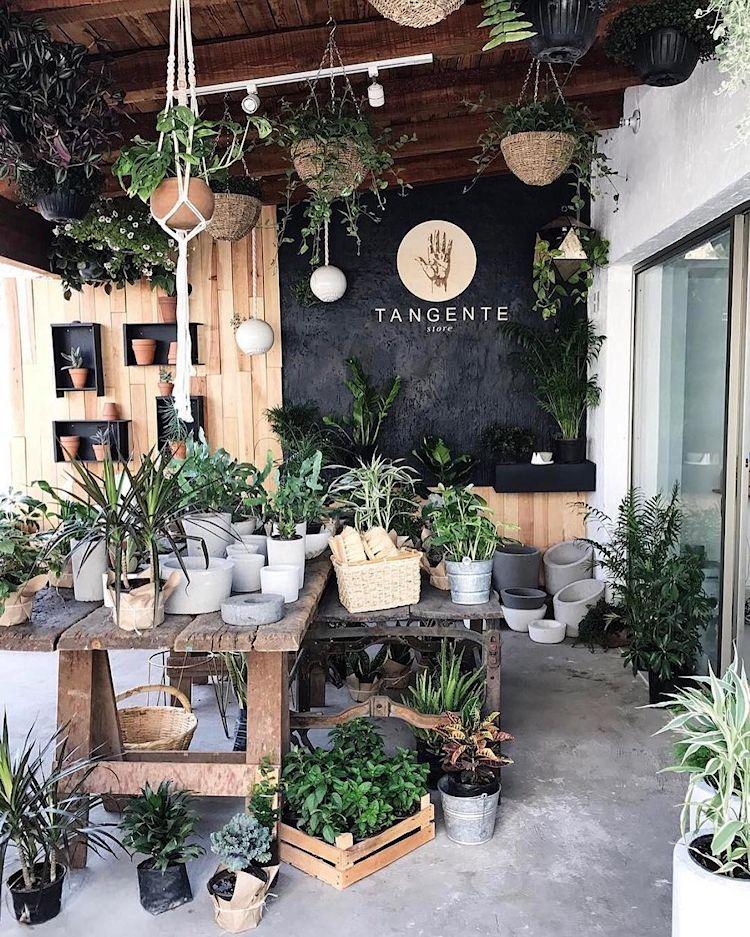 Tangente Store en Zapopan / Guadalajara 2