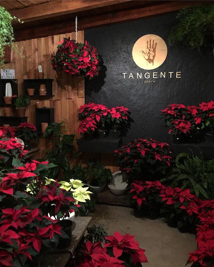 Tangente Store en Zapopan / Guadalajara 5